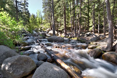 Colorado Stream Stock Photography