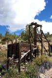 Colorado trä som bryter strukturen Royaltyfri Bild