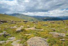 Colorado Tundra Royalty Free Stock Images