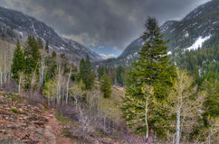Colorado- Vail-Eagle Mountain Wilderness Stock Photography