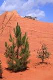 Colorado van Rustrel - de Provence Stock Foto