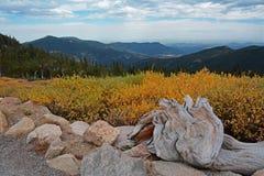 Colorado vandring royaltyfri fotografi