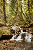 Colorado waterfall. Waterfall in the Colorado Rockies as the leaves begin to fall royalty free stock image