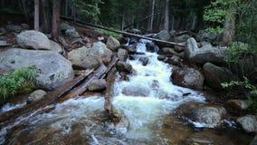 Colorado-Wildnis-Gebirgsfluss-Gesamtlänge stock footage