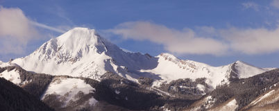 Colorado Winter Panorama Landscape Royalty Free Stock Photography