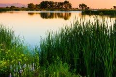 colorado wschód słońca obrazy royalty free