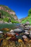 Coloradofloden i den Glenwood kanjonen Arkivfoton
