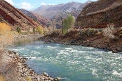 Coloradofloden i Glenwood Springs Arkivfoto