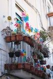 Colorante del arco iris de la placa giratoria de la flor en el balcón Fotografía de archivo