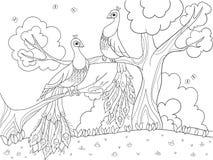 Coloration de bande dessinée pour des enfants Un oiseau, une plume d'un oiseau ou un paon sur un arbre Couples dans l'amour Images stock