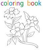 coloration de livre Photos stock