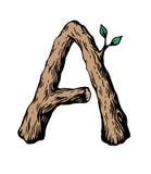 Colorato incidere la lettera A ha fatto di legno con le foglie sui precedenti bianchi royalty illustrazione gratis