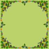 ColorBlossomsFrameSquareGreen Stock Foto's