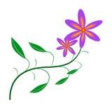 Colore astratto del fiore illustrazione vettoriale