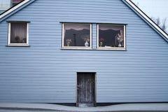 Colore blu-chiaro di legno della porta di entrata di architettura della Camera Immagine Stock Libera da Diritti