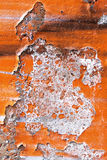 Colore creativo astratto del fondo dei graffiti Immagine Stock Libera da Diritti
