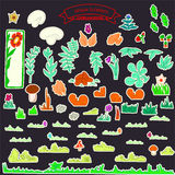 colore dei funghi e dei fiori Fotografia Stock