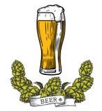 Colore del luppolo di vetro di birra Immagini Stock