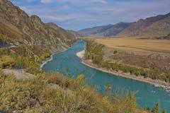 Colore del turchese del fiume di Katun nella caduta Immagini Stock