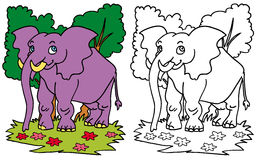 COLORE dell'elefante e BW sorridenti Illustrazione Vettoriale