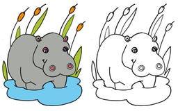COLORE dell'ippopotamo di coloritura e BW Fotografia Stock Libera da Diritti
