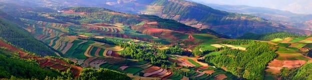 Colore della terra Fotografia Stock Libera da Diritti