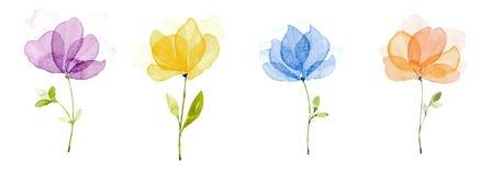 Colore di acqua dell'immagine, tiraggio della mano, fiori porpora, giallo, blu, arancio illustrazione di stock