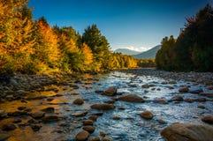 Colore di autunno lungo il fiume di Peabody nel cittadino bianco della montagna Immagini Stock Libere da Diritti