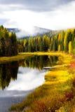 Colore di autunno lungo il flusso Immagini Stock Libere da Diritti