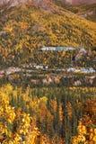 Colore di caduta nell'Alaska Fotografie Stock Libere da Diritti