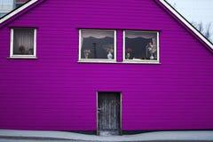 Colore di legno di rosa della porta di entrata di architettura della Camera Immagini Stock
