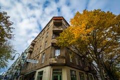 Colore e costruzione di autunno su Dunckerstraße, a Berlino, la Germania Immagini Stock