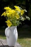 colore giallo dei fiori Immagini Stock Libere da Diritti