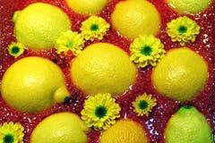 Colore giallo e colore rosso Fotografia Stock