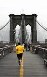 Colore giallo sul ponte di Brooklyn Immagine Stock Libera da Diritti