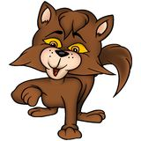Colore marrone del gatto Fotografie Stock Libere da Diritti