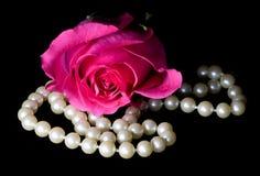 Colore rosa di Dewey di rosa e perle Immagine Stock
