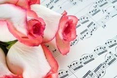 Colore rosa di rosa e nota Fotografia Stock