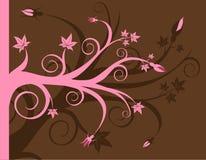 Colore rosa e Brown floreali Immagine Stock