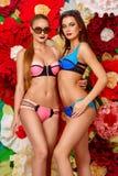 Colore rosa ed azzurro Fotografia Stock Libera da Diritti