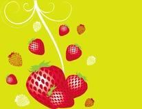 Colore rosso astratto della fragola dell'illustrazione della frutta   Fotografie Stock
