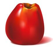 Colore rosso del Apple Fotografie Stock