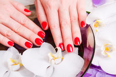 Colore rosso del manicure Fotografie Stock Libere da Diritti