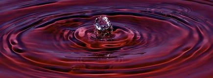 Colore rosso del velluto della spruzzata dell'acqua Fotografia Stock