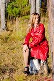 colore rosso della signora Immagini Stock Libere da Diritti