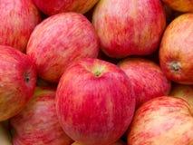Colore rosso delle mele un lo strato da frutta Fotografia Stock Libera da Diritti