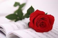 Colore rosso di rosa e note Immagine Stock