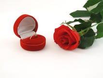 Colore rosso di rosa ed anello Fotografia Stock
