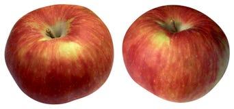 Colore rosso due delle mele Immagine Stock Libera da Diritti