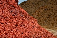 Colore rosso e pacciame del Brown Fotografia Stock Libera da Diritti